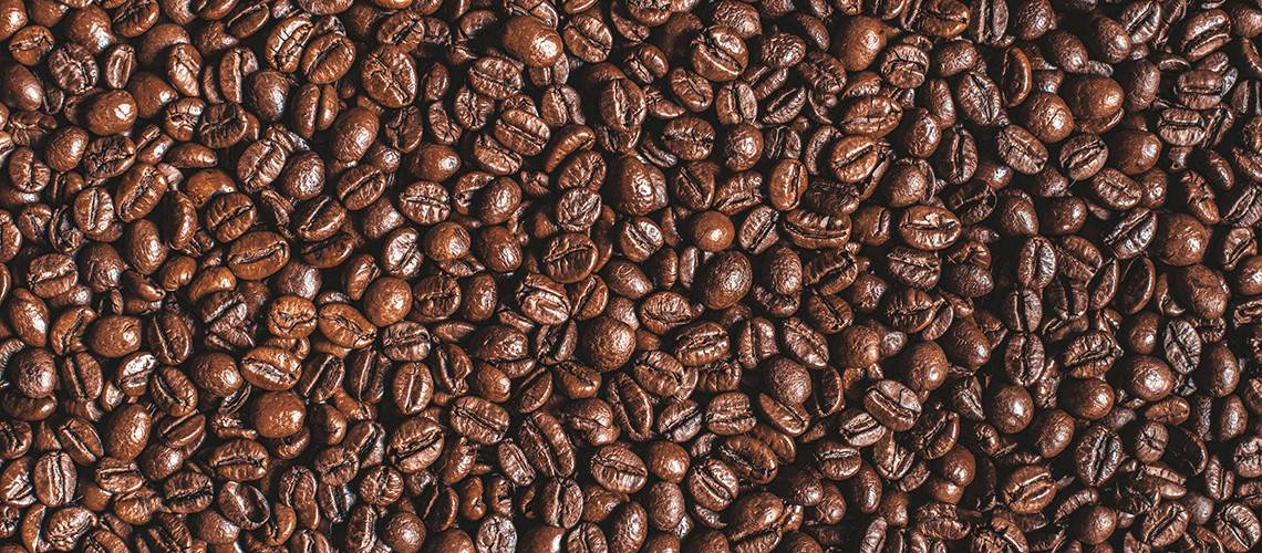 Light vs Medium vs Dark Roast: What's the Difference?